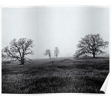Morning Fog Paradise California 1985 Poster