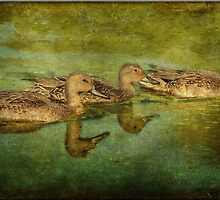 My Ducky Three by Crista Cowan
