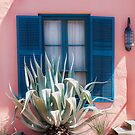 Blue Shutters by Marian Grayson