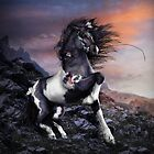 Apache Blue Horse by Shanina Conway