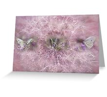 Softness In Pastels Greeting Card