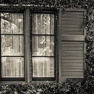 Shuttered Window by Marian Grayson