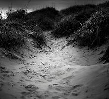 At the beach by LukKuzma