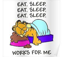 Garfield Eat Sleep Poster