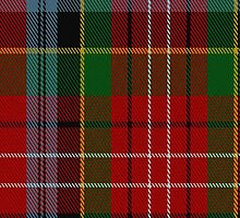 01352 Caledonia Fashion Tartan Fabric Print Iphone Case by Detnecs2013
