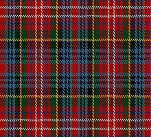 01354 Caledonia Varient Fashion Tartan Fabric Print Iphone Case by Detnecs2013