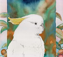 Cockatoo by Aakheperure