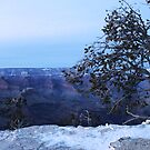 Grand, Grand Canyon by elaine1898