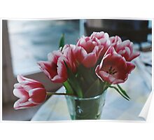 Tulips on film Poster