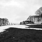 A Gray And Snowy Day In Temple Newsam by Jazzdenski