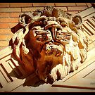 I Ain't Lion! by Deb  Badt-Covell