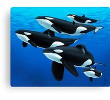 Pod of Orcas Canvas Print