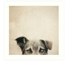 Half Dog Art Print