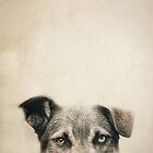 Half Dog by Priska Wettstein