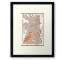 Protect our birds Framed Print