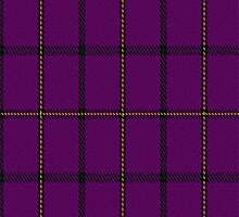 01375 Western Carolina University Tartan Fabric Print Iphone Case by Detnecs2013