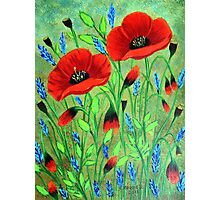 Poppies for you Photographic Print