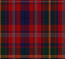 01383 Catalan Dance Tartan Fabric Print Iphone Case by Detnecs2013