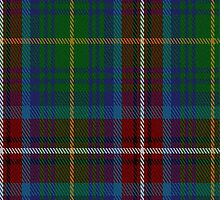 01389 Chattahoochee River District Tartan Fabric Print Iphone Case by Detnecs2013