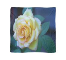 The Friendship Rose Scarf