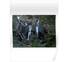 Stephenson Falls ( otways) Poster