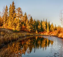Autumn Creek V by EelhsaM
