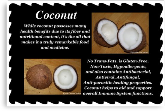 Coconut by DreamCatcher/ Kyrah Barbette L Hale
