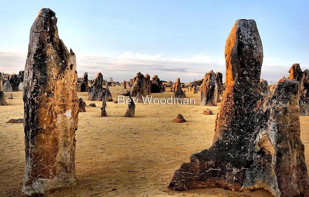 Close of Day - Pinnacles Western Australia by Bev Woodman
