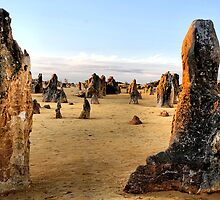 Close of Day - Pinnacles Western Australia by Bev Woodman