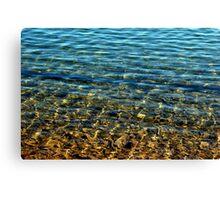 Lynx Lake Canvas Print