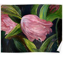 Nicola's Tulips Poster
