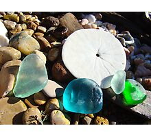 Beach Rock Garden Art Prints Seaglass Sand Dollar Photographic Print