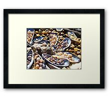 Sea Shells Art Prints Coastal Beach Seashell Framed Print