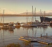 Tamar River dock and marina sunrise by Roger Neal