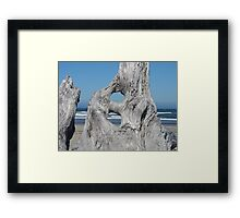 DRIFTWOOD art prints Ocean Coastal Shore Framed Print