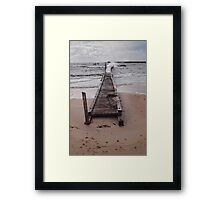 The Force of Nature Framed Print