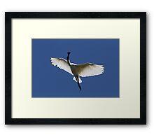 Sky Moves Framed Print