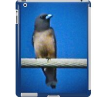 Blue Bill iPad Case/Skin