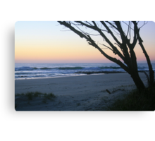 Daybreak at South Kingscliff ... Canvas Print