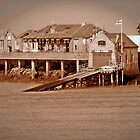 Birnbeck Pier in Somerset by trish725