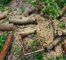 Tree Cutting Debris by jojobob