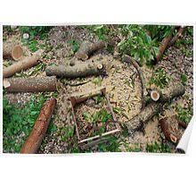 Tree Cutting Debris Poster