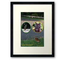 Hello breakfast!!  Framed Print
