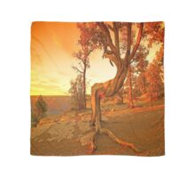 Grand Canyon Sunny Scarf