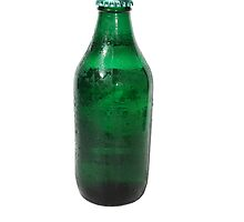 Isolated Green Beer Bottle by jojobob