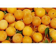 Yellow Cherries Photographic Print