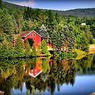 Summer in Vermont by Mitchell Grosky