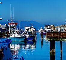 Saulsalito Wharf by Yukondick