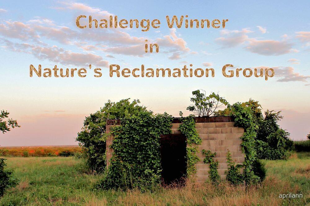 Banner - NR - Challenge Winner by aprilann