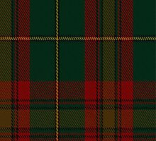 01433 Cozumel Fashion Tartan Fabric Print Iphone Case by Detnecs2013